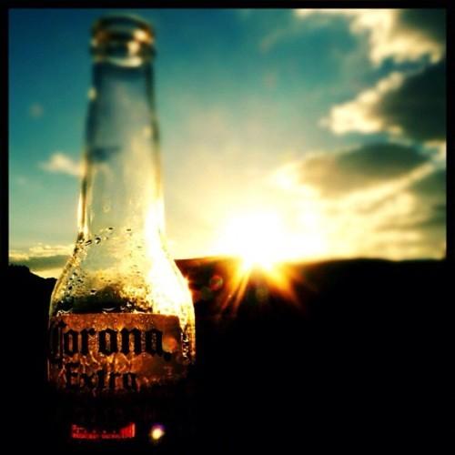 Coronas Large